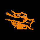 Icon-soins6